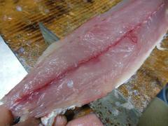 ツムブリ刺身と寿司 (18).jpg